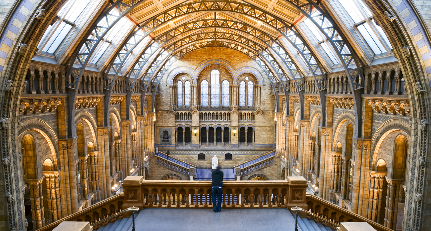 Natural History Museum Nottingham